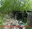 Жители Зареченского района хотят жить в чистом районе,а не в заросшем бурьяном и мусором!