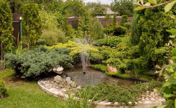 Дачный конкурс: сад семьи Голец