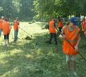 Где поработать подростку: отвечает Тульский областной центр занятости