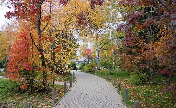 Осенний лесо-парк