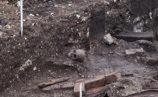 Экспертиза человеческих останков, с раскопок на Крестовоздвиженской площади в 2018 году