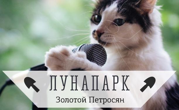 Поющий котэ