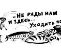 24-30 сентября: Тараканы, стрельба и «проституточная»