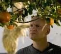 Адамовы яблоки (Дания, Германия, 2005)