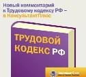 Новый комментарий к Трудовому кодексу РФ – в КонсультантПлюс