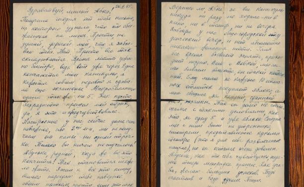Дневники войны. Письмо семей Дубровских и Дмитревых