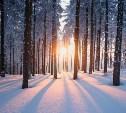 Участвуйте в фотоконкурсе зимней природы