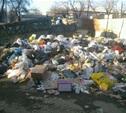 Тула тонет в мусоре