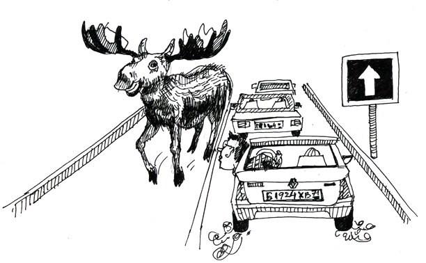 11-17 июля: Односторонние улицы, лось и ОМОН на Фрунзе