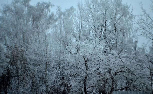 Зимняя сказка)