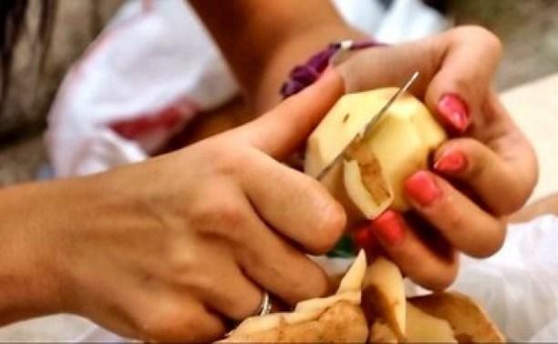 Загадка про картофелечистку от ЕГэ.
