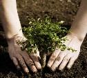 Приглашаю всех завтра (23го апреля) на посадку деревьев в Рогожинский парк. Приходите!)