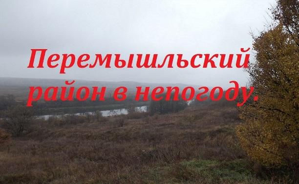 Перемышльский район в непогоду.