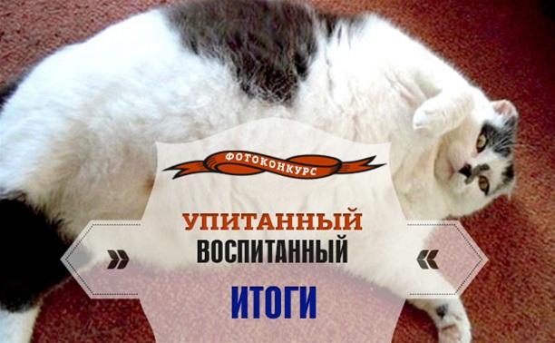 Конкурс «Упитанный-воспитанный». Поздравляем победителя!