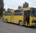 15 сентября. На улицах Тулы появились желтые «Икарусы»