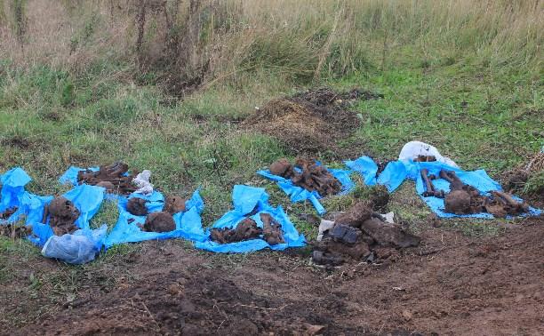 В д.Прудное обнаружены останки 22 защитников Тулы