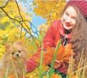 Чем болеют осенью домашние питомцы