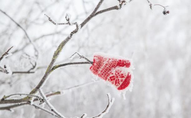 «Мороз и солнце, день чудесный!»: новый фотоконкурс Myslo