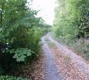 Каменная дорога в никуда