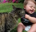 Домашние животные снижают риск аллергии и ожирения