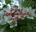 Весна в Ефремовском районе!