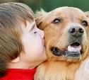 Сколько стоит содержание домашних животных