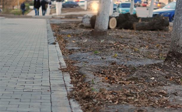 Тротуарная плитка в Туле выложена тяп-ляп? И так сойдет!