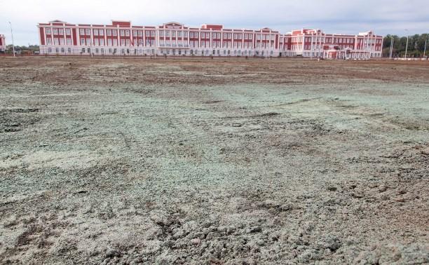 Зачем возле суворовского училища «покрасили» землю?