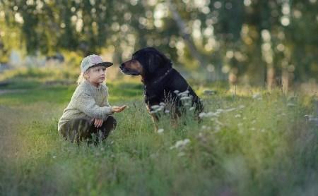 Выбраны лучшие фото друзей