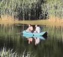 Зона отдыха «Золотой петушок», пруд в селе Высокое