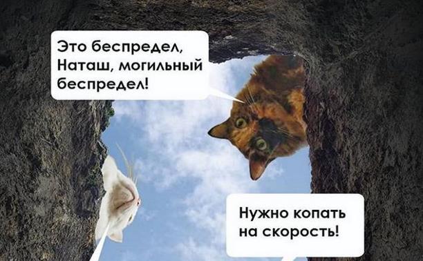 Копание могил на скорость. Соревнование в РФ.