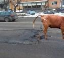 Технология ремонта дорог - НЕДОС*АЛ