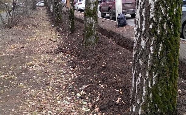 Деревья повреждены