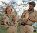 15 декабря: в Туле впервые увидели мелодраму об африканской львице