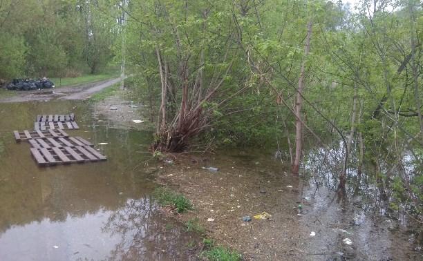 Косогорский пруд бежит от мусора