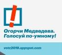 Запущено умное голосование для Тулы и Тульской области