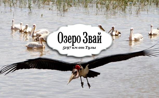 Озеро Звай. Эфиопия
