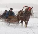 Выбраны лучшие фото зимних развлечений