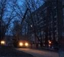 Ликвидация дерева на городском переулке