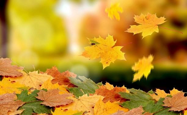 На ковре из жёлтых листьев...