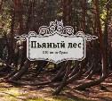 Пьяный лес. Рязанская область
