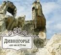 Едем в Дивногорье!