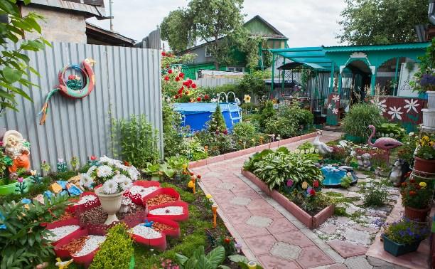 Дачный конкурс: участок семьи Рябых