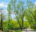 Обновленный парк для душевного отдыха.