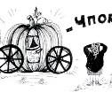 7-14 октября: спасем енота!