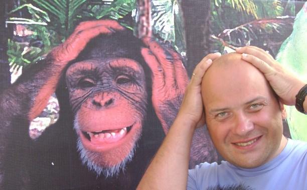 Определены самые весёлые обезьянки