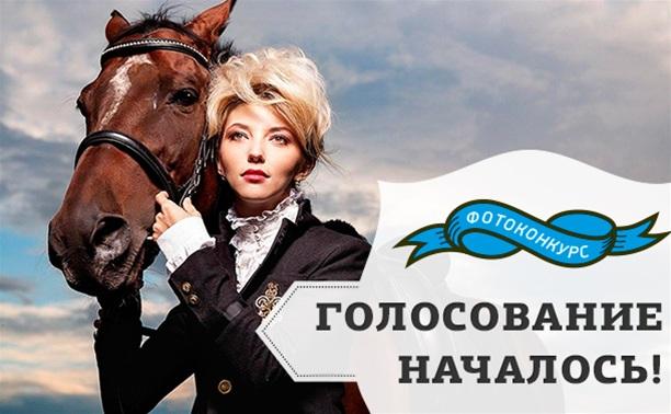 Только мы с конем: голосуем!