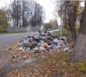 Р.п.Огарёвка Щёкинского района утопает в мусоре