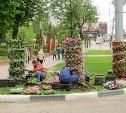 Тульские ботаники, мать их...