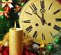 Где в Туле можно встретить Новый год?